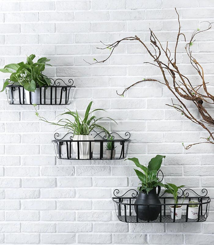 Indoor Plant Stand for Wall gardening - 3 set